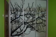 phoca_thumb_l_drzwi szafy- szko malowane 2
